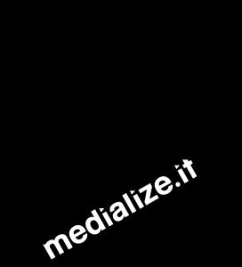 medializeitlg-black